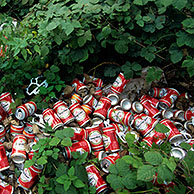 Illegal dump with beer cans in the bushes