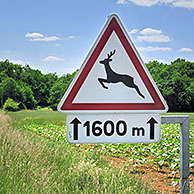 Warning sign / Traffic sign for crossing deer, La Brenne, France