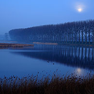 Creek at night, Belgium