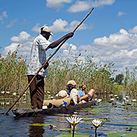Tourists traveling in traditional wooden canoe, mokoro / makoro in the Okavango Delta, Botswana, Africa