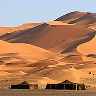 Bedouin tents and dromedary camels (Camelus dromedarius) in front of red sand dunes,  Erg Chebbi, Sahara desert, Morocco