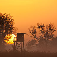 Raised stand for hunting roe deer in morning mist at sunrise in field