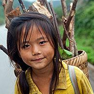 Young Lao girls carry brushwood in a basket on their back, Luang Namtha Province, Northern Laos