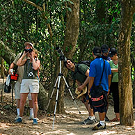 Birdwatchers / Birders with binoculars and telescope, Manuel Antonio NP, Costa Rica