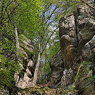 The sandstone rock formation Perekop in Berdorf, Little Switzerland  / Mullerthal, Grand Duchy of Luxembourg
