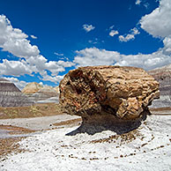 Petrified pedestal log along the Blue Mesa trail in the Painted Desert and Petrified Forest NP, Arizona, USA