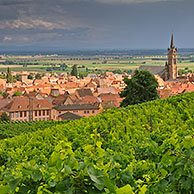Thunderstorm approaching vineyards and view over the village Dambach-la-Ville, Vosges, Alsace, France