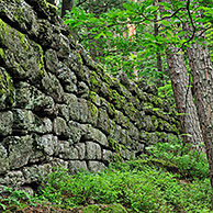 The Pagan Wall / Mur Païen in forest near Mont Sainte-Odile, Vosges, Alsace, France
